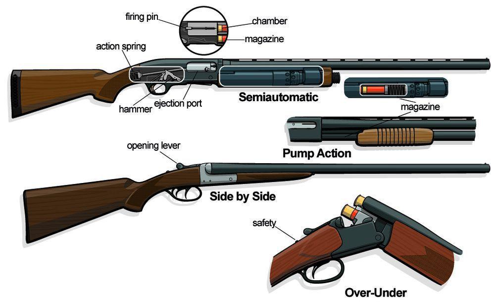 shotguns spread final art_2