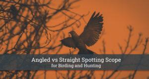 Angled vs Straight Spotting Scope