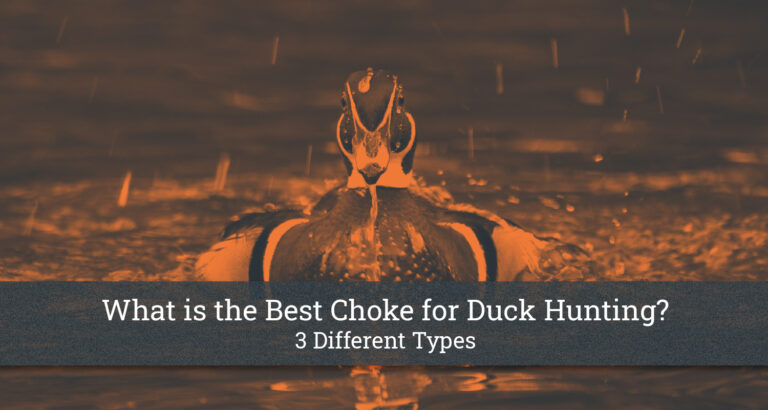 What is the Best Choke for Duck Hunting