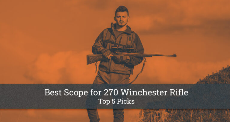 Best Scope for 270